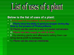 uses of a plant