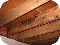 Symptoms Of Mold Exposure  On The Job With Basement SolutionsMold In Basement