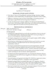 Summary Resume Example Executive Summary Resume Example Resume