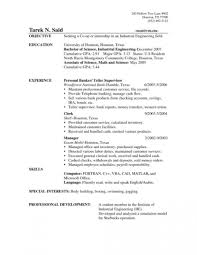 Data Entry Clerk Resume Examples Sales Samples Yun56 Co Grocery