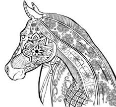 Diy Horse Coloring For Adults Horsegloss