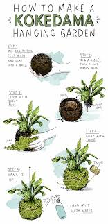 How to Make Kokedama: Small Space Hanging Gardens | Apartment ...