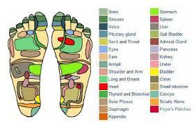 Free Foot And Hand Reflexology Chart Free Foot Reflexology Charts 35 Free Printables Word Pdf