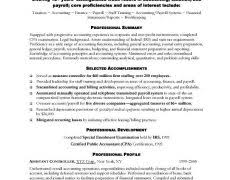 examples of a good essay introduction online maker  accountant resume examples