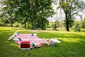 picnic wedding reception. Picnic Wedding Reception in Central Park A Central Park Wedding