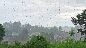 Hal itu disampaikan kepala seksi data dan informasi bmkg balikpapan, mulyono leonardo. Prakiraan Cuaca Balikpapan Kamis 3 Desember 2020 Bmkg Sebut Siang Hari Akan Hujan Petir Tribun Kaltim