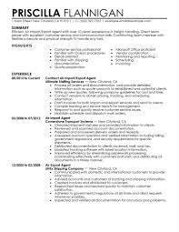 Military Resume Template Thisisantler