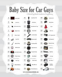 Pregnancy Baby Size Chart Week By Week Car Guys Guide To Baby Size During Pregnancy Submit