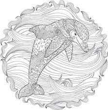 Small Picture Dolphin Doodle Art Coloring PagesDoodlePrintable Coloring Pages
