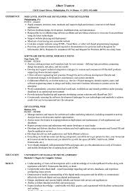 Tableau Sample Resumes Awesome Tableau Developer Resume Doc Images Professional Resume 66