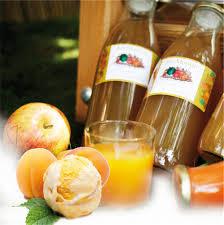 faire son jus maison et conserver facilement le meilleur de ses fruits