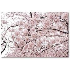 cherry blossom home decor polyvore