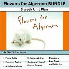 best flowers for algernon ideas high school flowers for algernon unit bundle