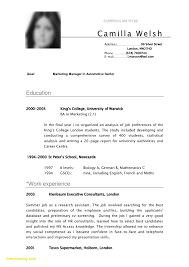 What Is A Cv Resume Examples 15 French Sample Example Of Resumes