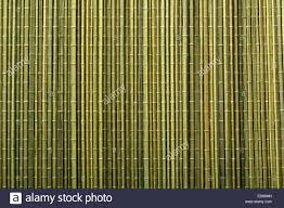 Green Bamboo Mat For Sushi Cooking And Kitchen Table Decorating