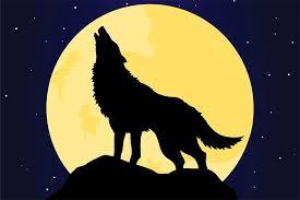 wolf howling. Fine Wolf Wolf Howling To Wolf Howling R