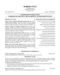 Executive Resume Example Senior Level Executive Resume Samples