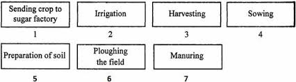 Biology Questions On Crop Production And Management For 8th Cbse