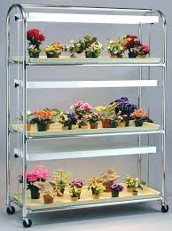indoor plant stand with grow light this type of light stand is perfect for growing violets indoor plant stand with grow light
