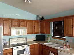 kitchen wall colors with oak cabinets. 100+ Kitchen Wall Colors With Honey Oak Cabinets - Ideas For Backsplash Check More K