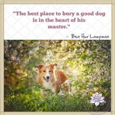 Loss Of A Pet Quote Loss of Pet Quotes 36