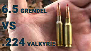 Ammo Showdown 6 5 Grendel Vs 224 Valkyrie