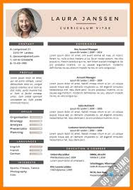 11 Template Cv English Phoenix Officeaz