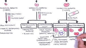 Anemia Chart Anaemia Anemia Classification Microcytic Normocytic And Macrocytic And Pathophysiology