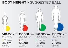 Exercise Ball Size Chart Exercise Ball