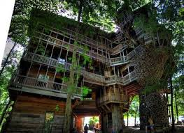 tree house floor plans for adults. Captivating 9 Unique Tree House Designs And Extraordinary Treehouses For Adults Floor Plans D