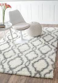 white shag rug. Elegant Nuloom 5u X 7u Slyvia Shaggy Rug In White And Gray Shag