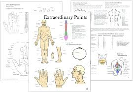 Acupuncture Points Chart Pdf Bedowntowndaytona Com