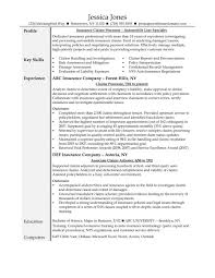 Bunch Ideas Of Extremely Creative Claims Adjuster Resume Examples