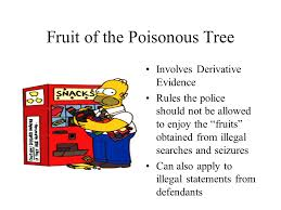 KNOW YOUR RIGHTS V 2 LAW II  Ppt DownloadFruit Of Poisonous Tree Doctrine Definition