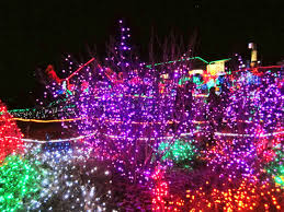 Zoo Lights Seattle Zoo Lights In Tacoma Wa Christmas In America Holidays