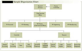 Finance Organizational Chart Organization Of The Financial Management Function In