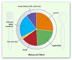 Healthy And Balanced Diet Chart A Balanced Diet For Kids Is So Important
