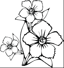 Hibiscus Flower Coloring Pages Beautiful Flower Coloring Pages