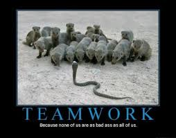 Inspirational Teamwork Quotes Interesting 48 Best Teamwork Quotes Sayings
