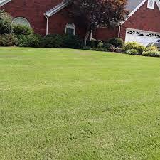 chesapeake va lawn care service lawn