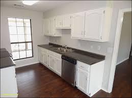Kitchen Colors With White Cabinets Unique Kitchen Colors White