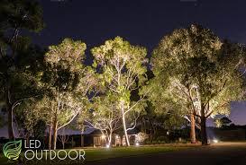 landscape lighting trees. picture landscape lighting trees a