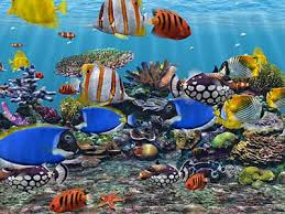 animated aquarium wallpaper for windows 7 free. Perfect Free Fish Aquarium Screensaver Intended Animated Aquarium Wallpaper For Windows 7 Free