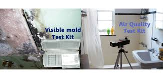 black mold detector. Brilliant Black Black Mildew On Damp Basement Walls And Ceilings Throughout Mold Detector