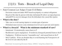 tort of negligence duty of care essay mla papers tort of negligence duty of care essay