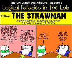effective arguing beware of logical red herrings xonitek strawman