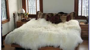 tremendeous sheepskin rug costco on elegant or rugs windward