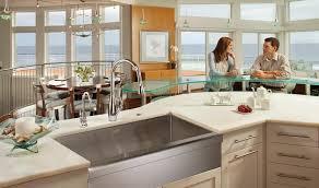 Kitchen Sinks Franke Beauteous Kitchen Sink Franke