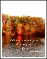 Autumn Quotes Inspiration Sunday Quotes Autumn Leaves New House New Home