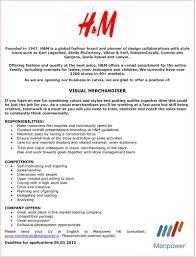 professional - Job Description For Merchandiser